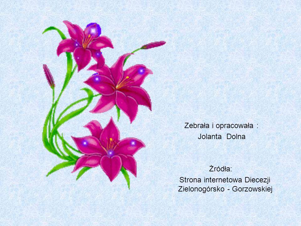 Strona internetowa Diecezji Zielonogórsko - Gorzowskiej