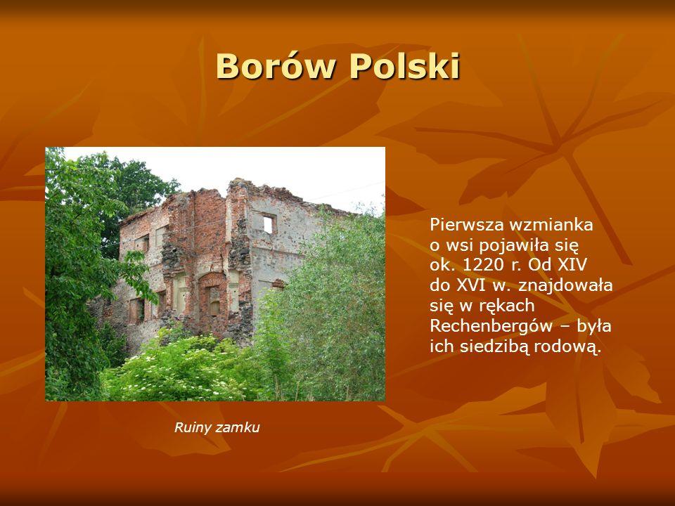 Borów PolskiPierwsza wzmianka o wsi pojawiła się ok. 1220 r. Od XIV do XVI w. znajdowała się w rękach Rechenbergów – była ich siedzibą rodową.