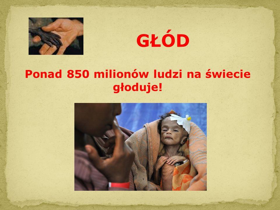 Ponad 850 milionów ludzi na świecie głoduje!