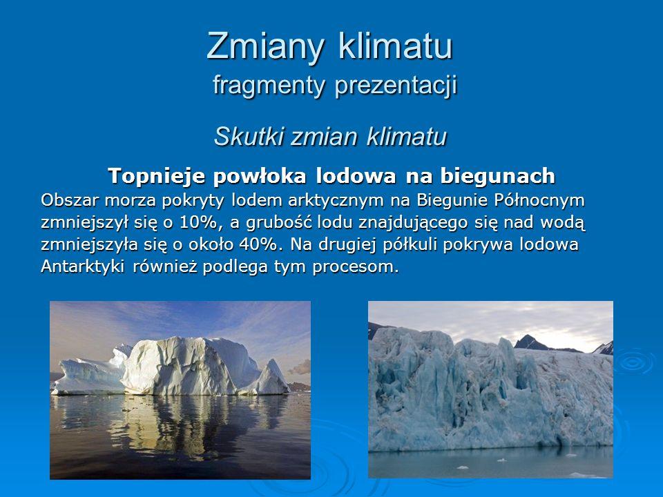 Zmiany klimatu fragmenty prezentacji Skutki zmian klimatu