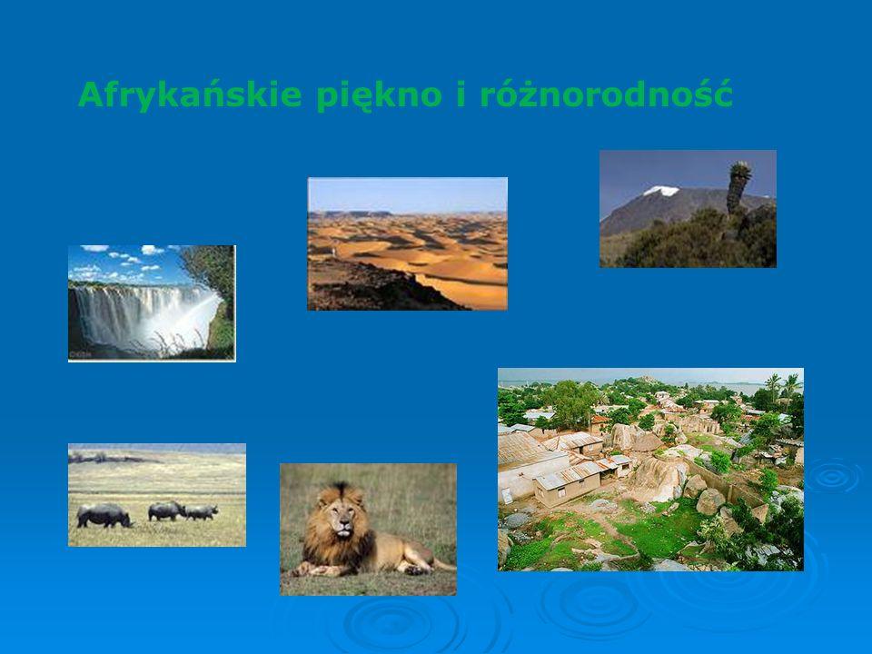 Afrykańskie piękno i różnorodność
