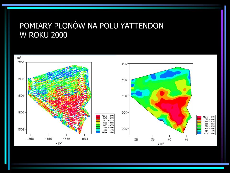POMIARY PLONÓW NA POLU YATTENDON W ROKU 2000