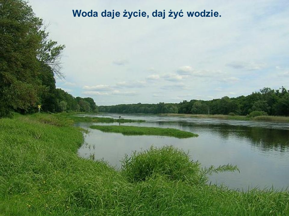 Woda daje życie, daj żyć wodzie.