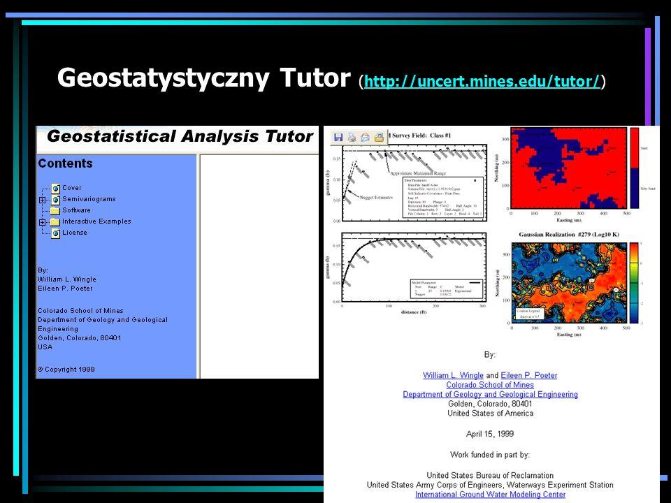 Geostatystyczny Tutor (http://uncert.mines.edu/tutor/)