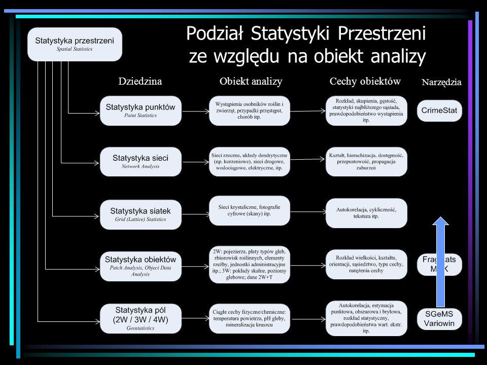Podział Statystyki Przestrzeni ze względu na obiekt analizy