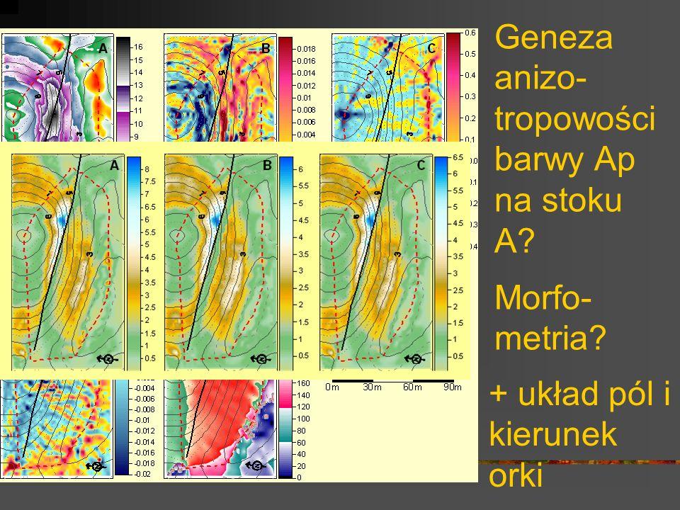 Geneza anizo-tropowości barwy Ap na stoku A Morfo-metria