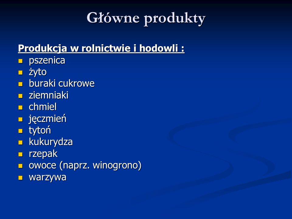 Główne produkty Produkcja w rolnictwie i hodowli : pszenica żyto