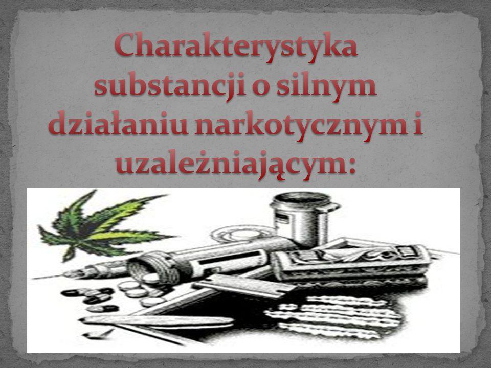 Charakterystyka substancji o silnym działaniu narkotycznym i uzależniającym: