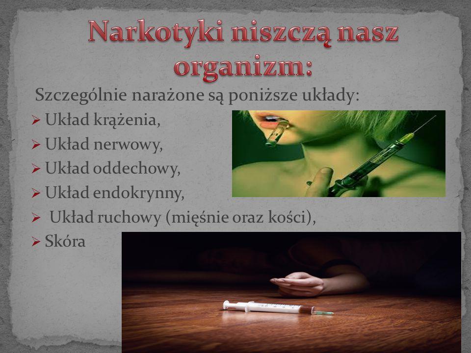 Narkotyki niszczą nasz organizm: