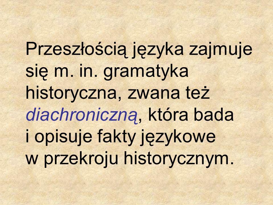 Przeszłością języka zajmuje się m. in