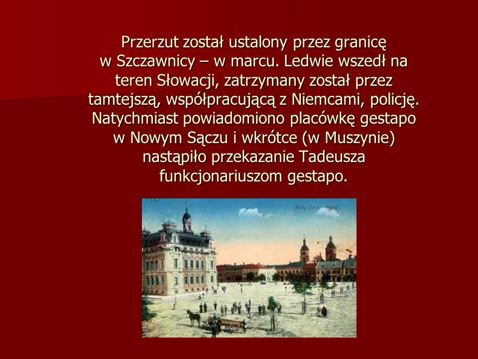 Przerzut został ustalony przez granicę w Szczawnicy – w marcu