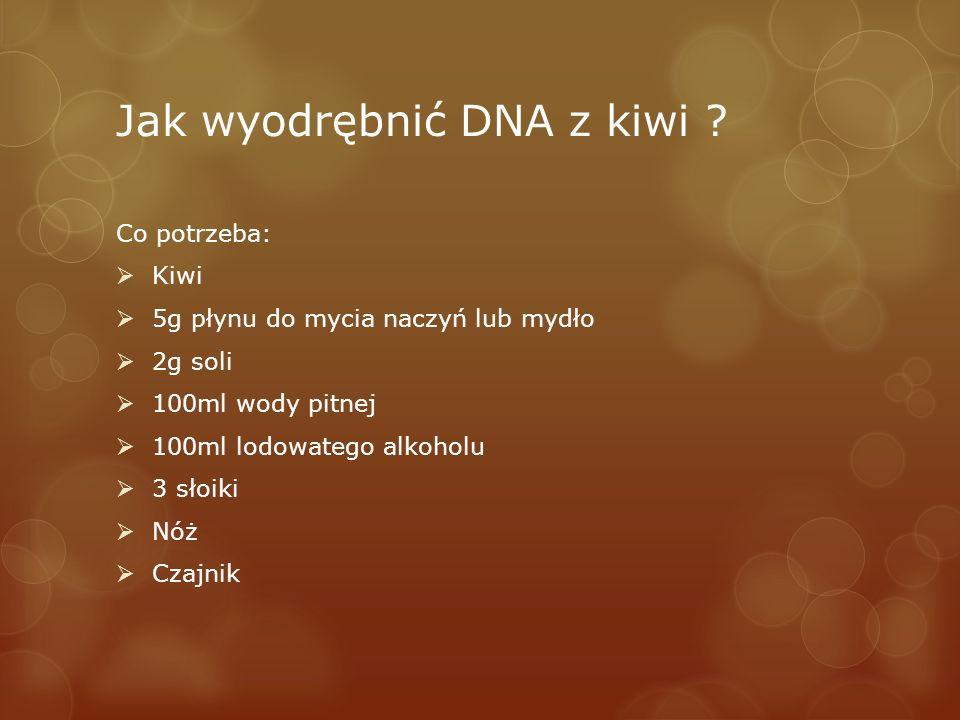 Jak wyodrębnić DNA z kiwi