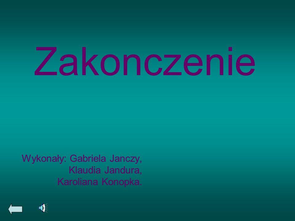 Zakonczenie Wykonały: Gabriela Janczy, Klaudia Jandura, Karoliana Konopka.