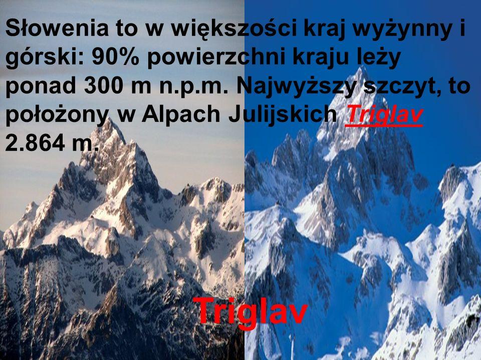 Słowenia to w większości kraj wyżynny i górski: 90% powierzchni kraju leży ponad 300 m n.p.m. Najwyższy szczyt, to położony w Alpach Julijskich Triglav 2.864 m.