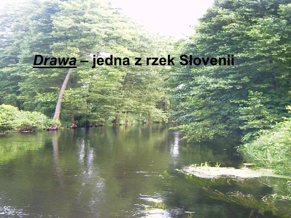 Drawa – jedna z rzek Słovenii