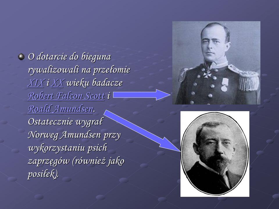 O dotarcie do bieguna rywalizowali na przełomie XIX i XX wieku badacze Robert Falcon Scott i Roald Amundsen.