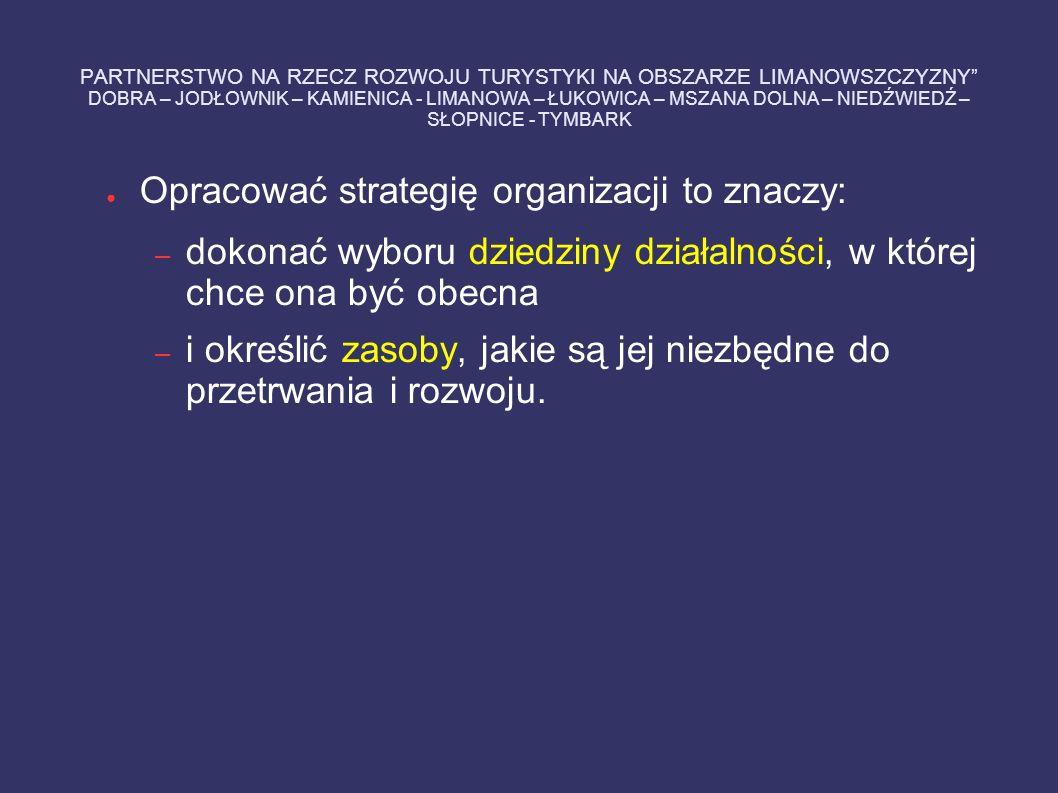 Opracować strategię organizacji to znaczy: