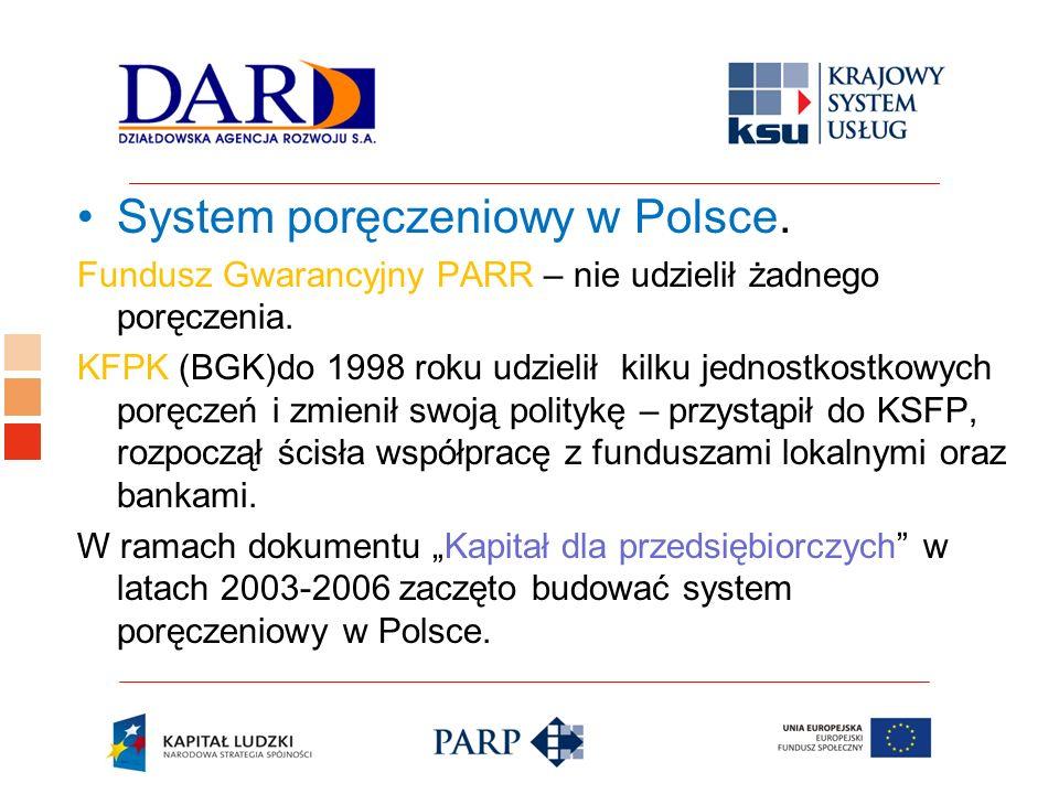 System poręczeniowy w Polsce.