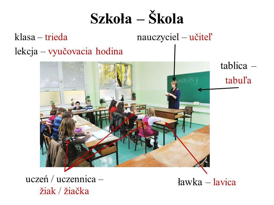 uczeń / uczennica – žiak / žiačka
