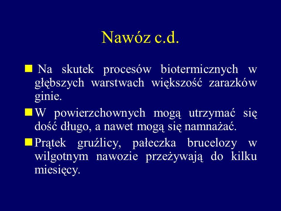 Nawóz c.d. Na skutek procesów biotermicznych w głębszych warstwach większość zarazków ginie.