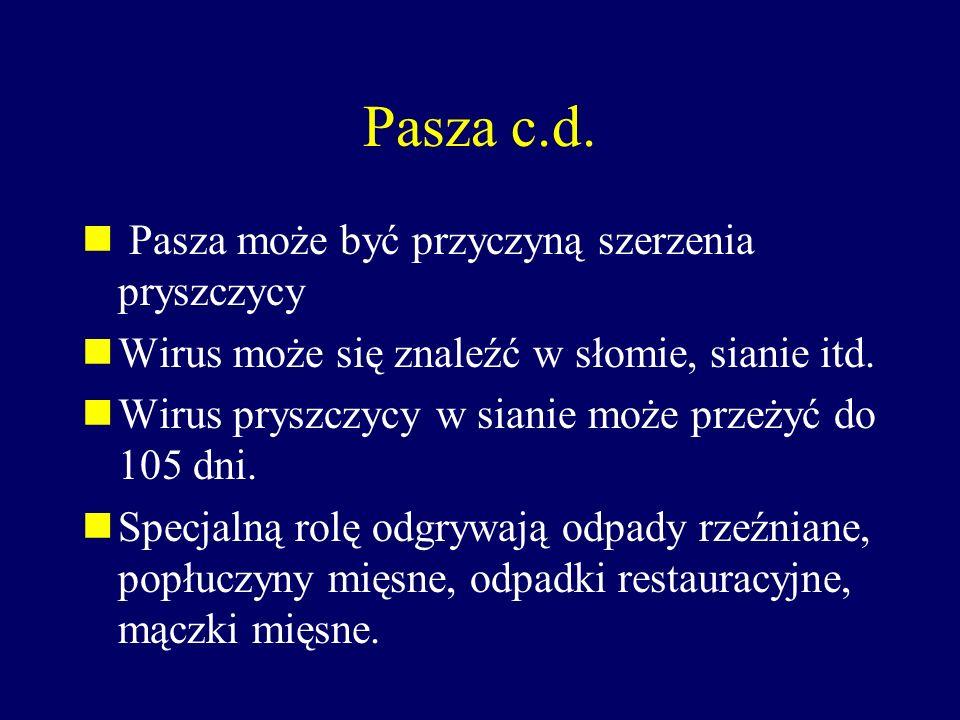 Pasza c.d. Pasza może być przyczyną szerzenia pryszczycy