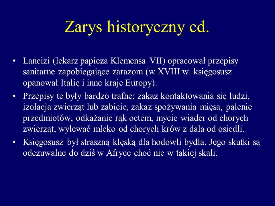 Zarys historyczny cd.