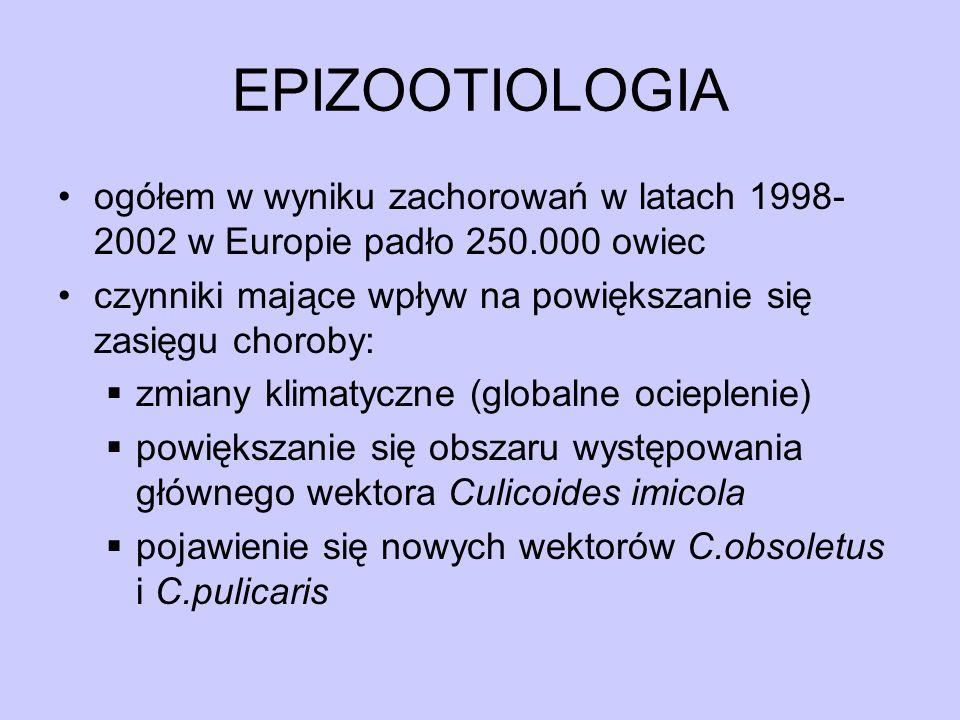 EPIZOOTIOLOGIA ogółem w wyniku zachorowań w latach 1998-2002 w Europie padło 250.000 owiec.