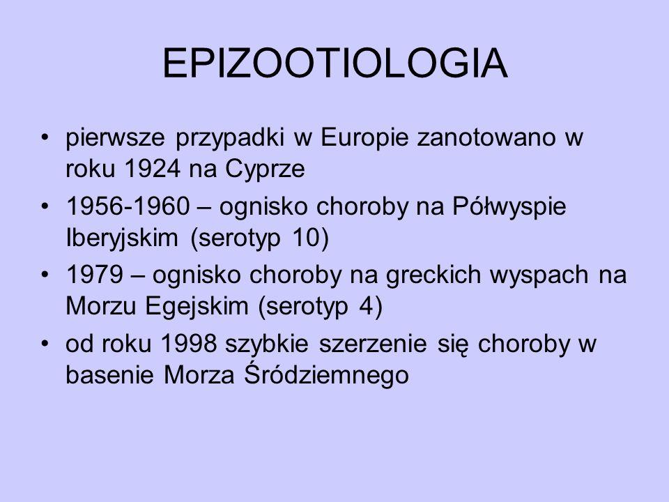 EPIZOOTIOLOGIA pierwsze przypadki w Europie zanotowano w roku 1924 na Cyprze. 1956-1960 – ognisko choroby na Półwyspie Iberyjskim (serotyp 10)