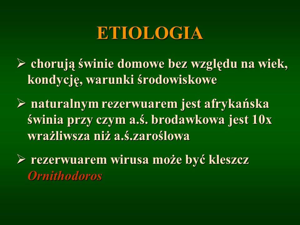 ETIOLOGIA chorują świnie domowe bez względu na wiek, kondycję, warunki środowiskowe.