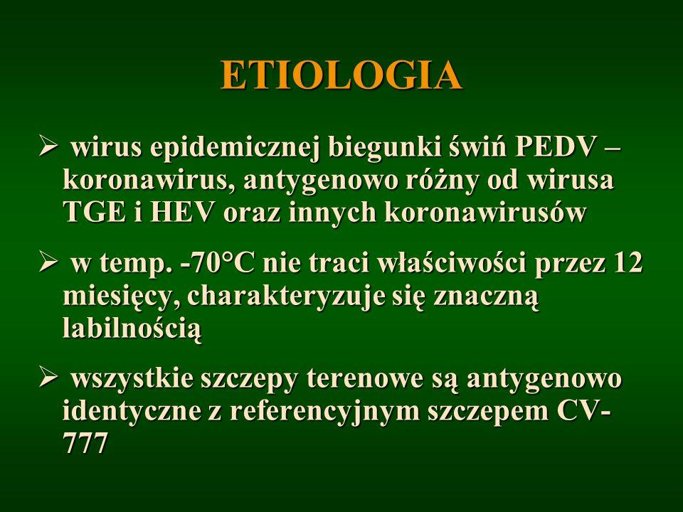 ETIOLOGIAwirus epidemicznej biegunki świń PEDV – koronawirus, antygenowo różny od wirusa TGE i HEV oraz innych koronawirusów.