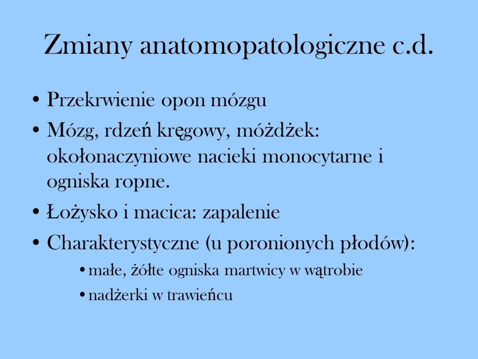 Zmiany anatomopatologiczne c.d.