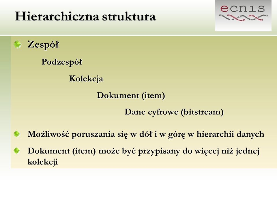 Hierarchiczna struktura