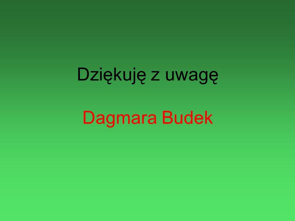 Dziękuję z uwagę Dagmara Budek