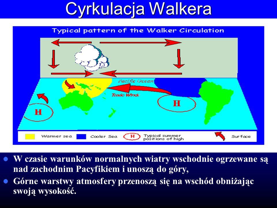 Cyrkulacja Walkera W czasie warunków normalnych wiatry wschodnie ogrzewane są nad zachodnim Pacyfikiem i unoszą do góry,