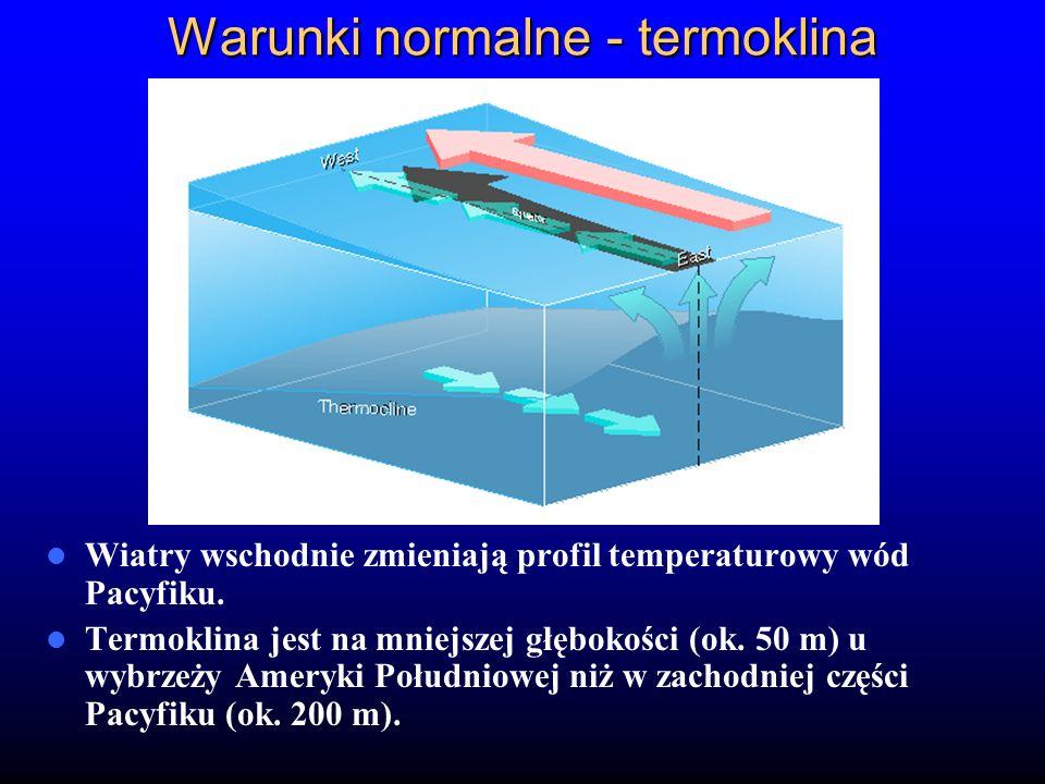 Warunki normalne - termoklina