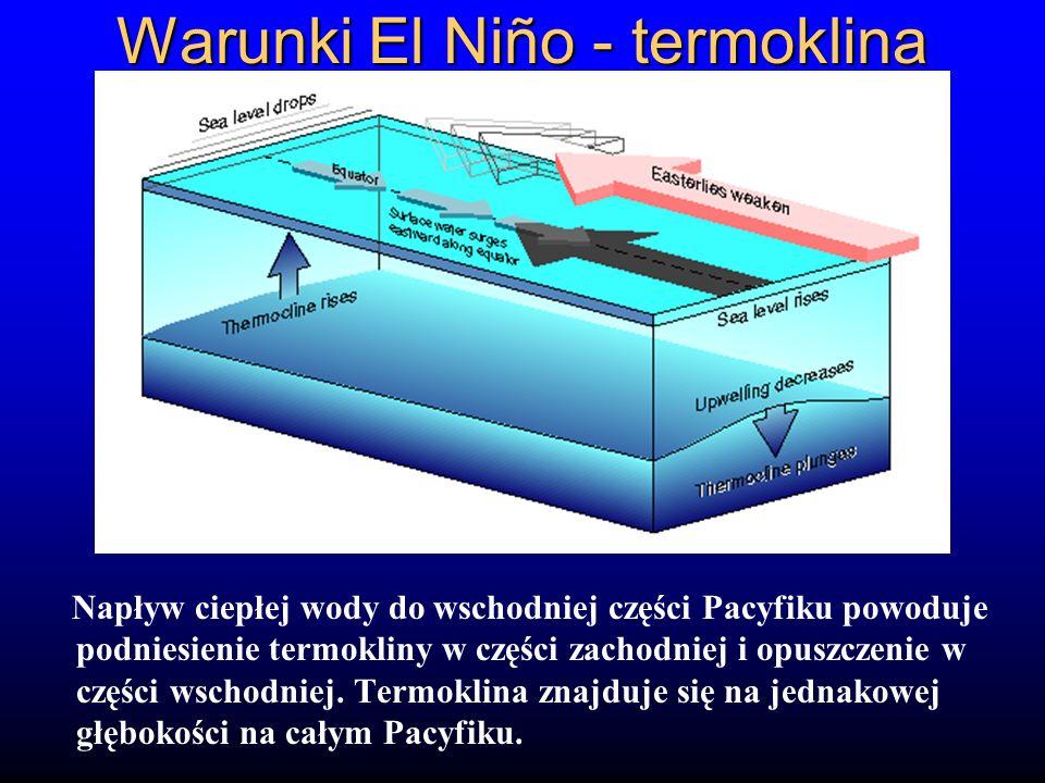 Warunki El Niño - termoklina