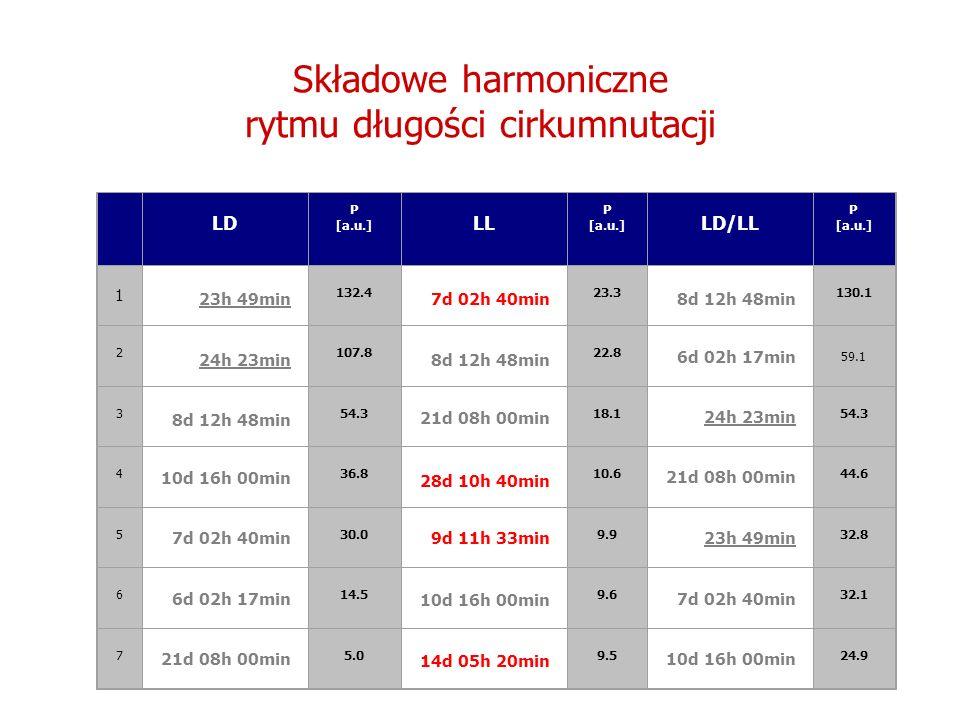 Składowe harmoniczne rytmu długości cirkumnutacji