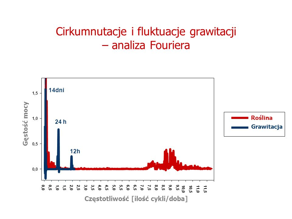 Cirkumnutacje i fluktuacje grawitacji – analiza Fouriera
