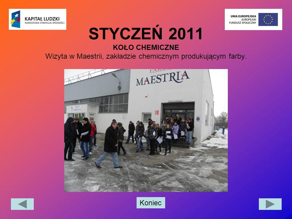 STYCZEŃ 2011 KOŁO CHEMICZNE Wizyta w Maestrii, zakładzie chemicznym produkującym farby.