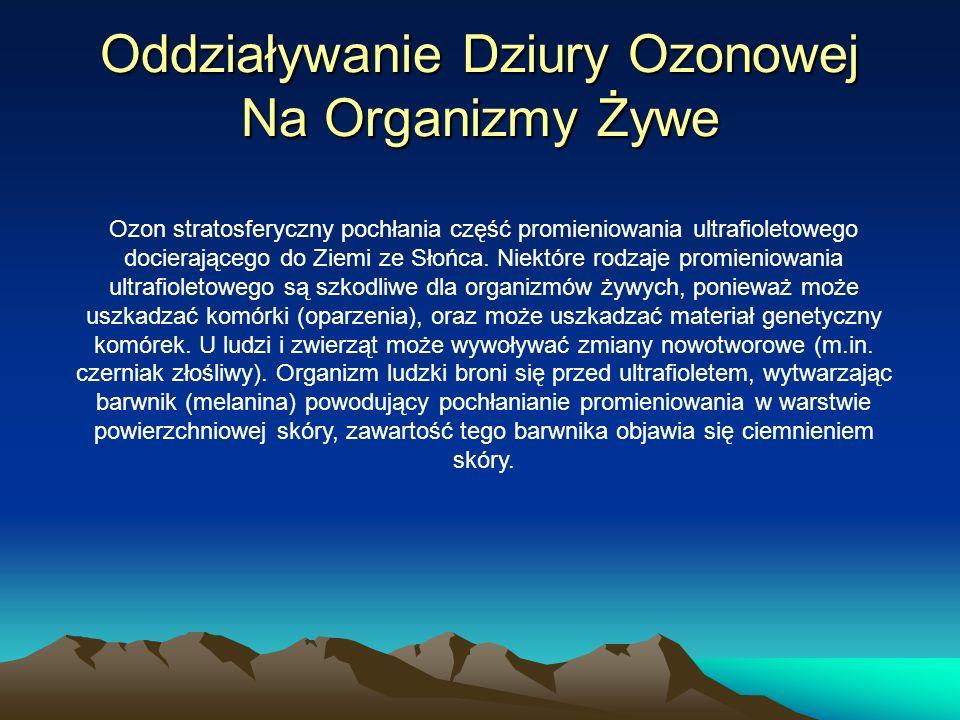 Oddziaływanie Dziury Ozonowej Na Organizmy Żywe