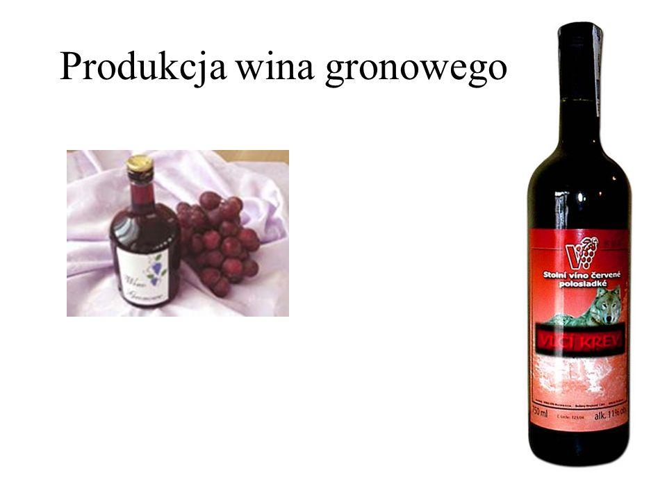Produkcja wina gronowego