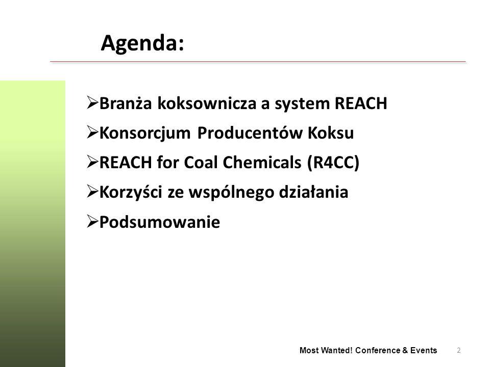 Agenda: Branża koksownicza a system REACH Konsorcjum Producentów Koksu