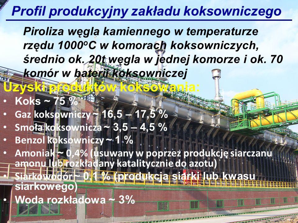 Profil produkcyjny zakładu koksowniczego