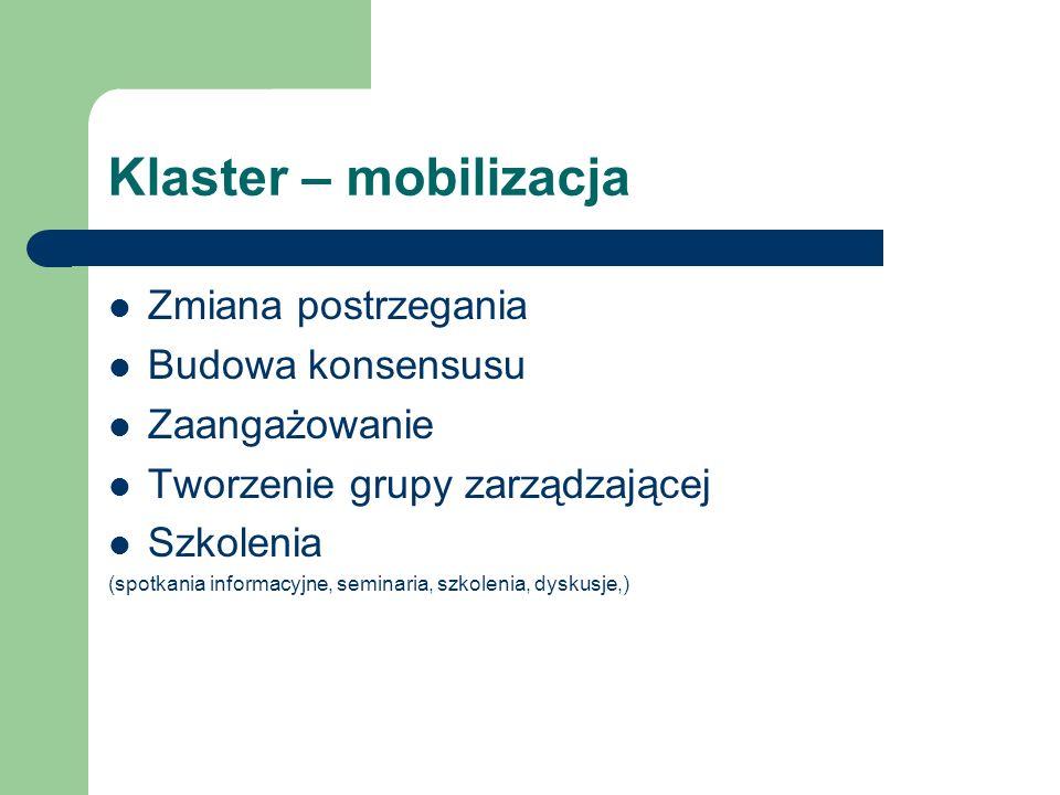 Klaster – mobilizacja Zmiana postrzegania Budowa konsensusu