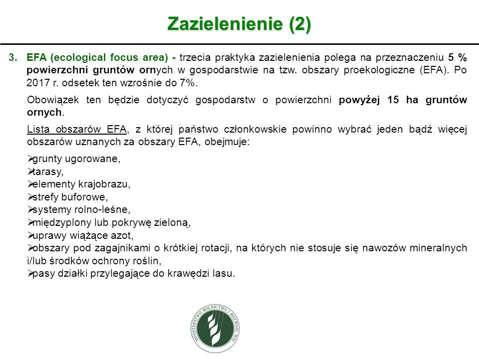 Zazielenienie (2)