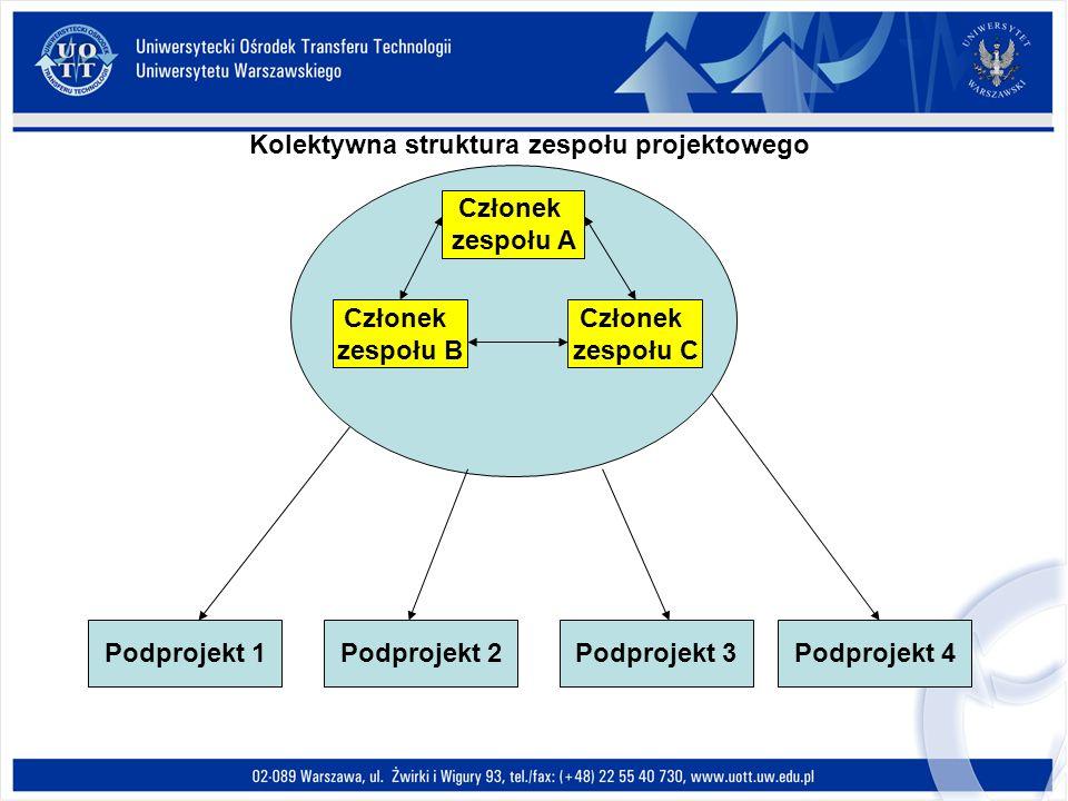 Kolektywna struktura zespołu projektowego