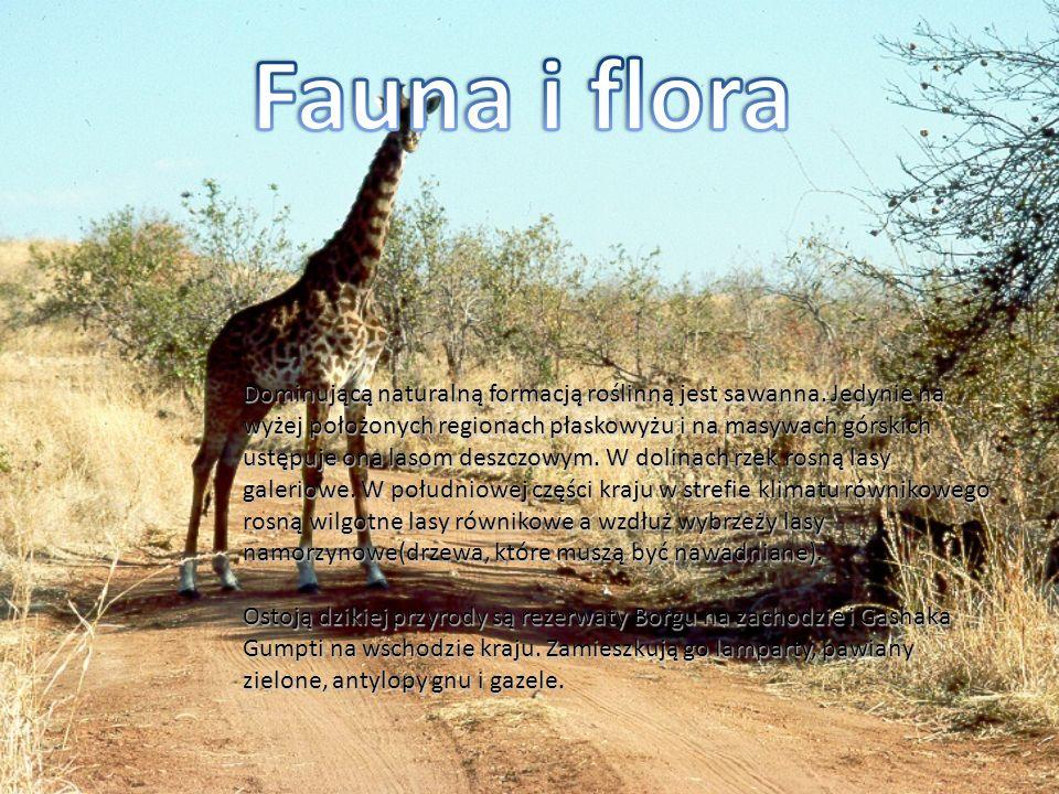Fauna i flora