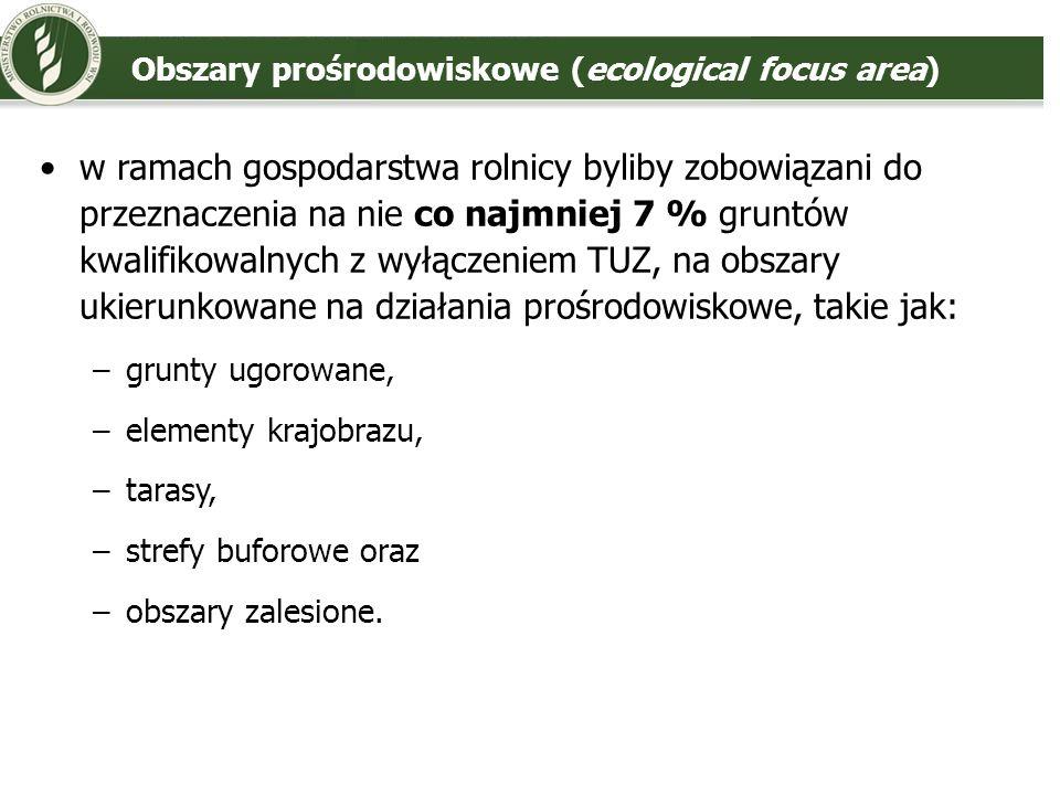 Obszary prośrodowiskowe (ecological focus area)