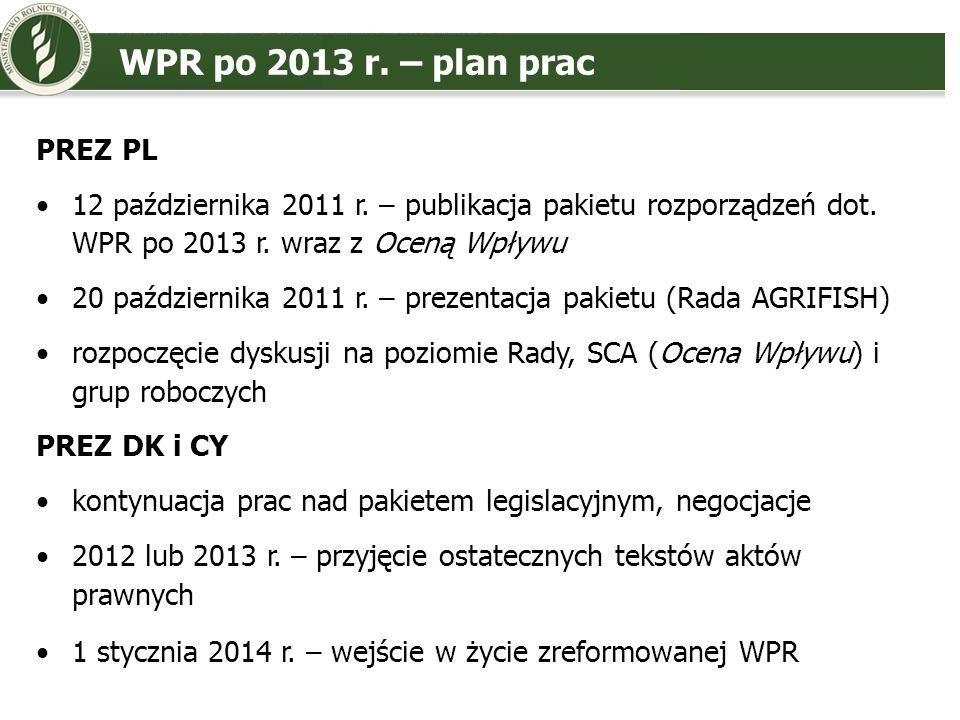 WPR po 2013 r. – plan prac PREZ PL