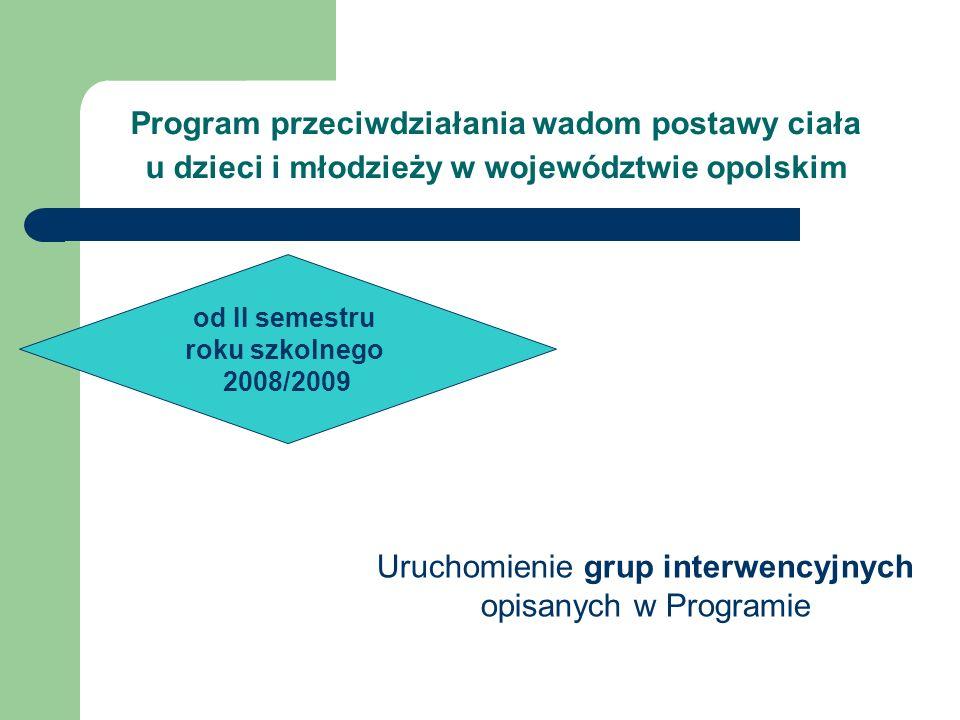 Uruchomienie grup interwencyjnych opisanych w Programie